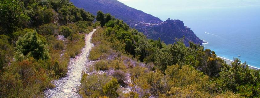 Cap_Corse_chemin_entre_Olcani_Nonza